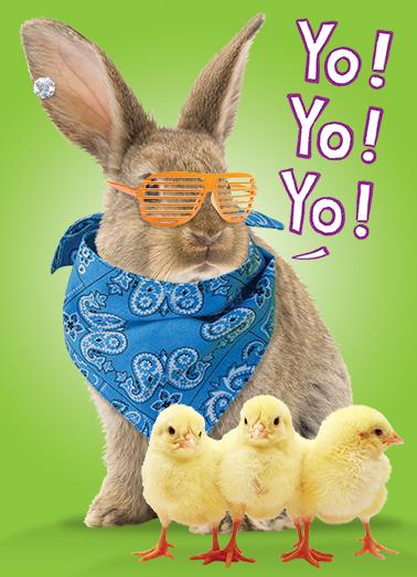 funny easter ecard yo yo bunny from cardfool com